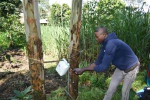 The Water Project: Bukhaywa Community, Ashikhanga Spring -  Using A Fabricated Handwashing Point