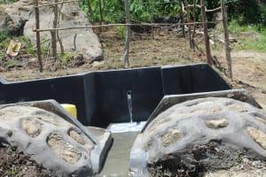 The Water Project: Mahira Community, Kusimba Spring -  Protected Kusimba Spring