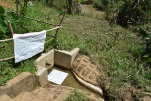 The Water Project: Musango Community, Mushikhulu Spring -  Installed Reminder Chart At The Community