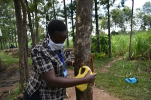 The Water Project: Burachu B Community, Namukhuvichi Spring -  Attaching The Leaky Tin To A Tree