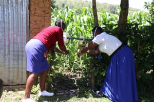 The Water Project: Imbinga Community, Arunga Spring -  Facilitators Using Installed Leaky Tins In The Community