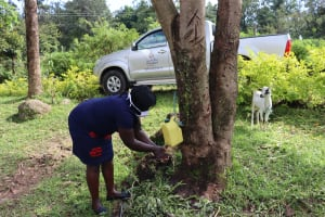 The Water Project: Mubinga Community, Mulutondo Spring -  Demonstrations Of Using Leaky Tins For Handwashing