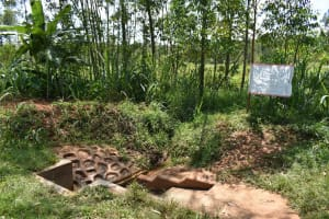 The Water Project: Ebutindi Community, Tondolo Spring -  Installed Reminder Chart On Covid At The Spring