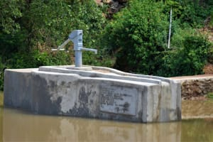 The Water Project: Nduumoni Community A -  Complete Well