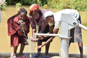 The Water Project: Nduumoni Community A -  Water From The Well