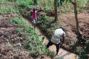 The Water Project: Ewamakhumbi Community, Mukungu Spring -  Opening Of Drainage Channel