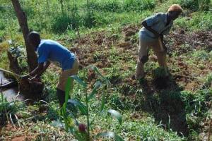 The Water Project: Ewamakhumbi Community, Mukungu Spring -  Site Clearance