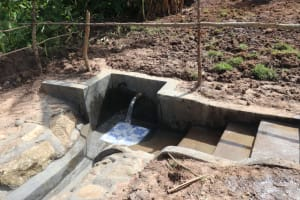 The Water Project: Mahira Community, Litinyi Spring -  Completed Litinyi Spring