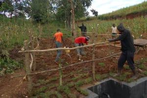 The Water Project: Ewamakhumbi Community, Mukungu Spring -  Grass Planting