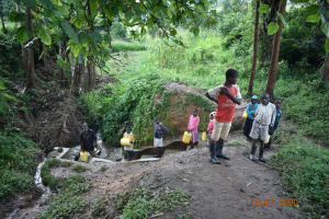 The Water Project: Mungakha Community, Asena Spring -  The Whole Family Went To Fetch Water