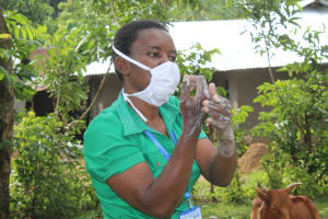 The Water Project: Bukhunyilu Community, Solomon Wangula Spring -  Demonstrating Handwashing