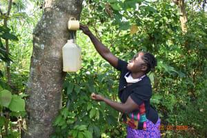 The Water Project: Shikhombero Community, Atondola Spring -  Serilah Uses Her Handwashing Station