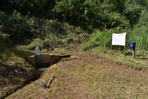 The Water Project: Bumavi Community, Shoso Mwoga Spring -  Installed Reminder Chart Next To The Spring