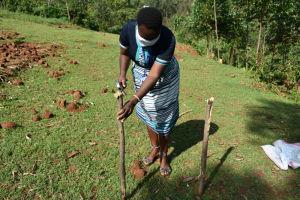 The Water Project: Bumavi Community, Shoso Mwoga Spring -  Setting Stand For Handwashing