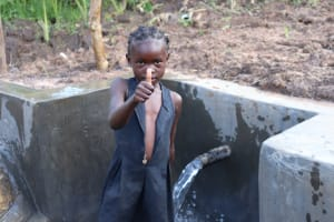 The Water Project: Mahira Community, Litinyi Spring -  Thumbs Up For Clean Water