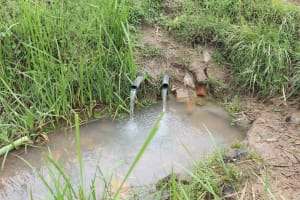 The Water Project: Mukhuyu Community, Chisombe Spring -  Chisombe Spring Before Protection