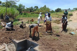 The Water Project: Mukhuyu Community, Chisombe Spring -  Grass Planting