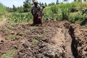 The Water Project: Mukhuyu Community, Chisombe Spring -  Women Planting Grass