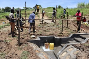 The Water Project: Mukhuyu Community, Chisombe Spring -  Fencing