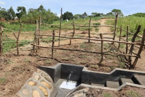 The Water Project: Mukhuyu Community, Chisombe Spring -  Complete Spring