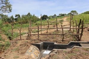 The Water Project: Mukhuyu Community, Chisombe Spring -  Structure Of Completed Spring