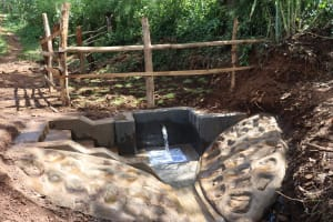 The Water Project: Harambee Community, Elijah Kwalanda Spring -  Completed Spring