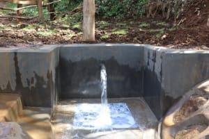 The Water Project: Harambee Community, Elijah Kwalanda Spring -  Water Flowing