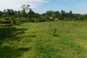 The Water Project: Mahola Community, Oyula Spring -  Landscape Around Oyula Spring
