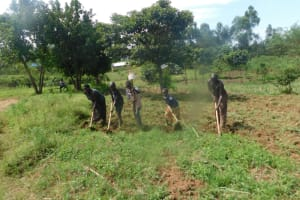 The Water Project: Mahola Community, Oyula Spring -  Farming Is The Major Livelihood
