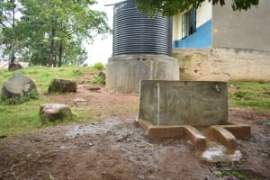 The Water Project: Isango Primary School -  Small Rain Tank With Taps