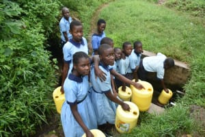 The Water Project: Isango Primary School -  Students Collecting Water At Spring