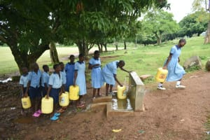 The Water Project: Isango Primary School -  Students Collecting Water From Rain Tank Taps