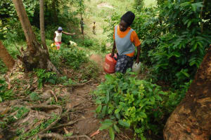 The Water Project: Emutetemo Community, Lubale Spring -  Carrying Water Up The Steep Hill From The Spring