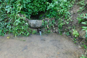 The Water Project: Emutetemo Community, Lubale Spring -  Current Situation Of Lubale Spring