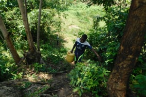 The Water Project: Emutetemo Community, Lubale Spring -  Taking Water Home From Lubale Spring