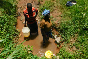 The Water Project: Mukhweso Community, Shemema Spring -  Collecting Water