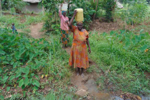 The Water Project: Nguvuli Community, Busuku Spring -  Carrying Water