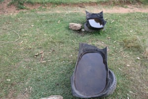 The Water Project: Nguvuli Community, Busuku Spring -  Cattle Trough