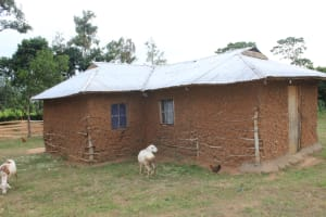 The Water Project: Nguvuli Community, Busuku Spring -  Homestead Compound