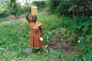 The Water Project: Nguvuli Community, Busuku Spring -  Rose Carrying Water