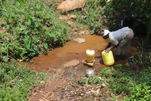 The Water Project: Shihome Community, Peter Majoni Spring -  Fetching Water At Peter Majoni Spring