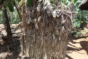 The Water Project: Shihome Community, Peter Majoni Spring -  Bathing Room Made Of Maize Stalks
