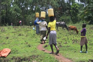 The Water Project: Makale Community, Luyingo Spring -  Carrying Water Home