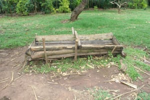 The Water Project: Makale Community, Luyingo Spring -  Cattle Feeding Trough
