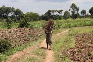 The Water Project: Shitavita Community, Patrick Burudi Spring -  Children Carrying Firewood