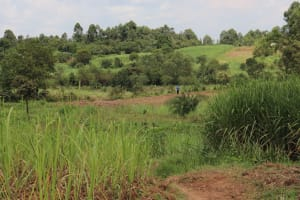 The Water Project: Shitavita Community, Patrick Burudi Spring -  Community Landscape