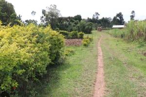 The Water Project: Shitavita Community, Patrick Burudi Spring -  Main Path To The Community