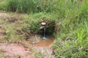 The Water Project: Shitavita Community, Patrick Burudi Spring -  Water Source