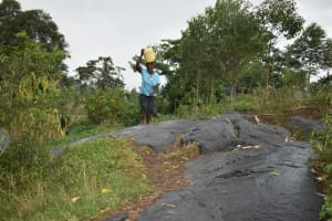 The Water Project: Silungai B Community, Tali Saya Spring -  Ruth Traverses The Rocky Landscape Home
