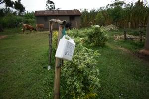 The Water Project: Mukhungula Community, Mulongo Spring -  Leaky Tin For Handwashing